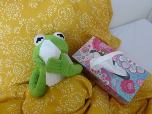 Kermit the Frog with tissues